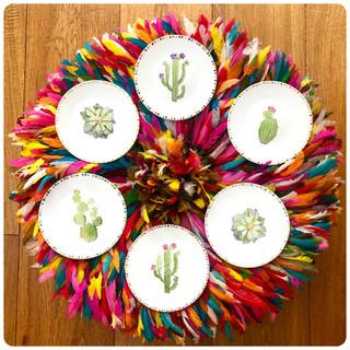 cactus & cactus