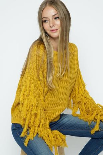 Fringed Sleeve Trimmed Sweater