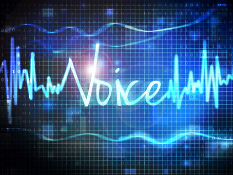 Is a Voice Biometric flexible enough for your use case?