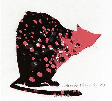 CAT_PHOTO1.jpg