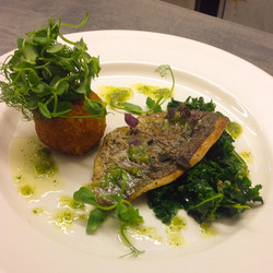 Bream fillet with aranchini