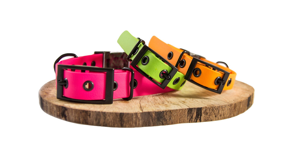 2 buckle collar - 25 mm