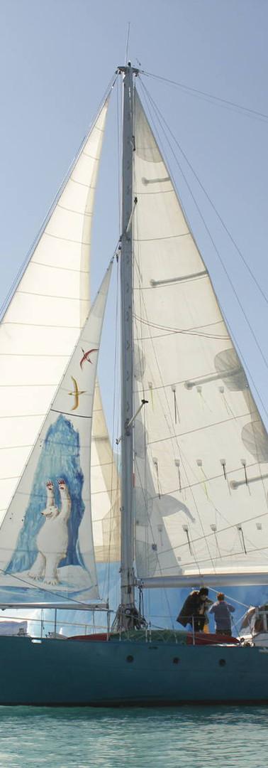 Navigation polaire