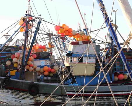 Port de pêche d'Essaouira.