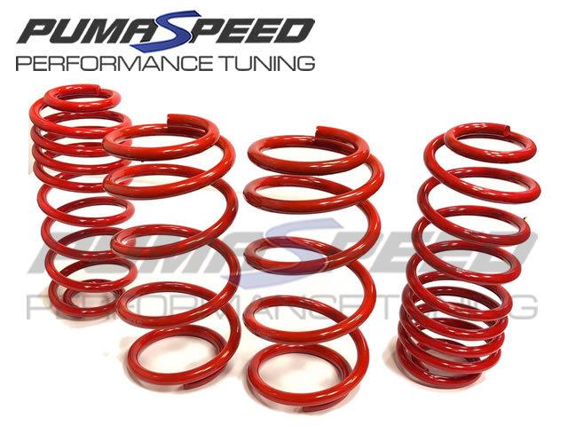Pumaspeed Stance Lowering Springs Fiesta Mk8 ST