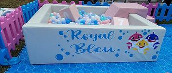 royal%20bleu_edited.jpg