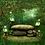 Thumbnail: MELISSE ET LE PUITS MAGIQUE       TOME 3 Conscientiser et améliorer