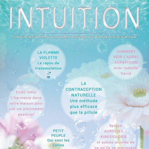 INTUITION 3 pdf