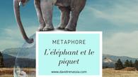 L'éléphant et le piquet (métaphore)