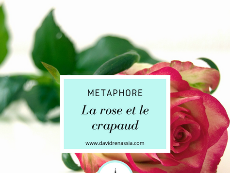 La rose et le crapaud (métaphore)