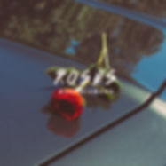 Mark Diamond, Roses