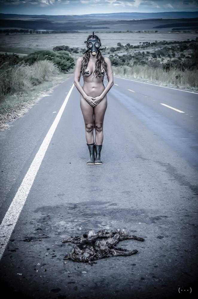 O Caminho do Cerrado por Melissa Maurer