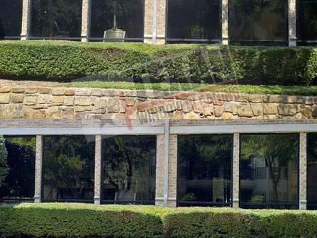 Is Professional Window Cleaning Worth It?