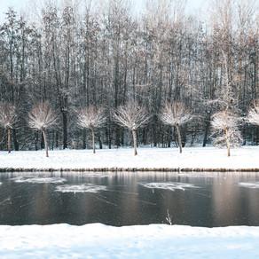 Winter wonderland in Mechelen