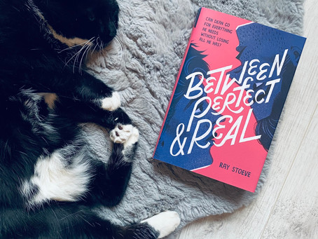 Book Review: Between Perfect & Real by Ray Stoeve