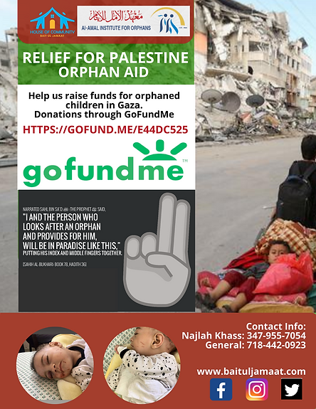 Palestine Relief.png