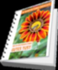 Bienen rettungs-checkliste 3d.png