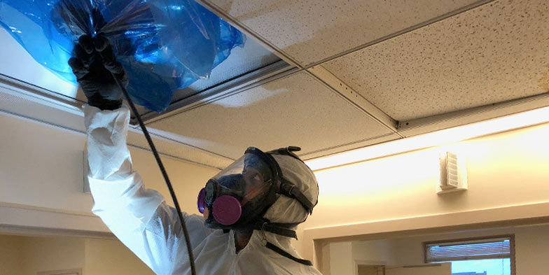 Dryer Vent & Dryer Duct Cleaning