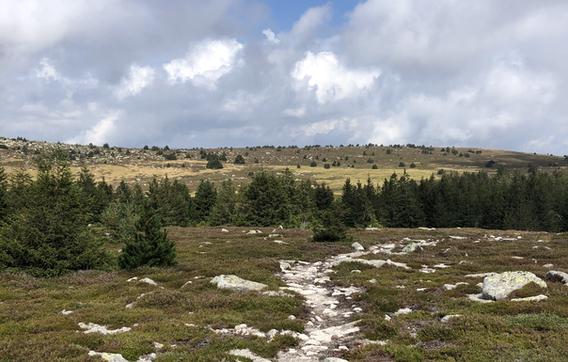 20200813 - Rando Mont Lozère (9).jpeg