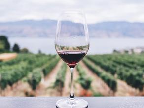 Pourquoi boit-on du vin ?