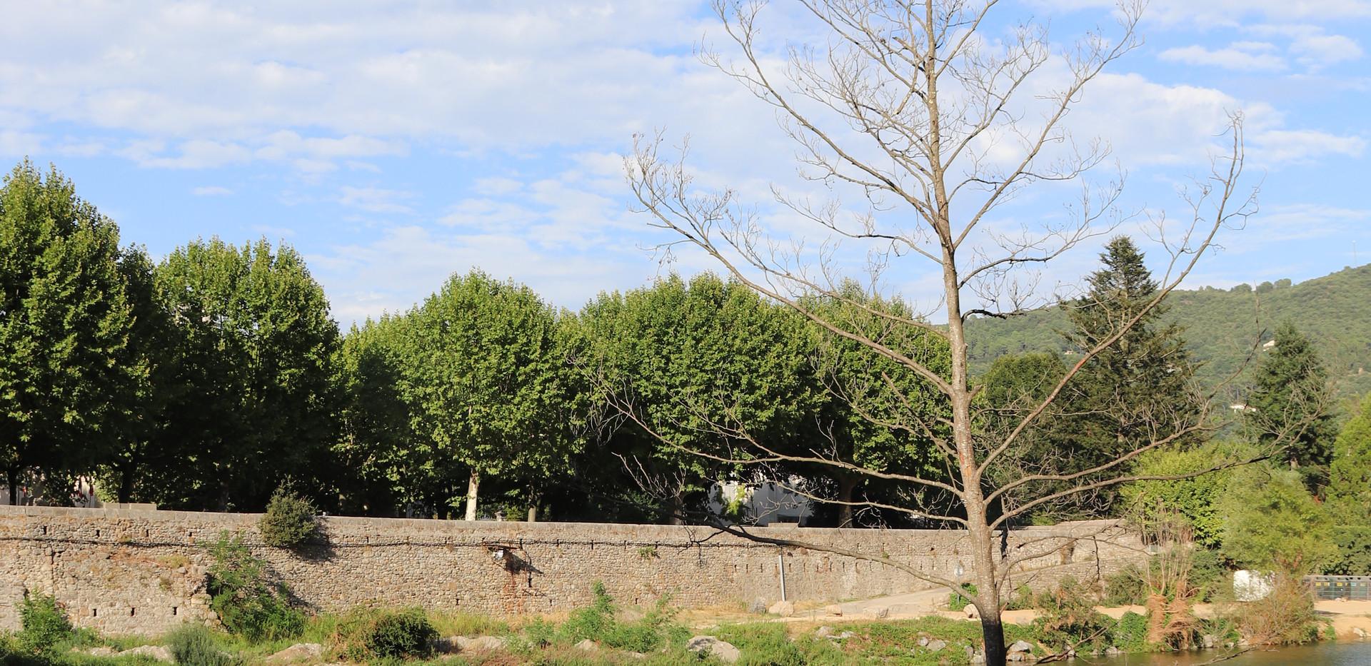 20200810 - St Jean du Gard (34).jpeg