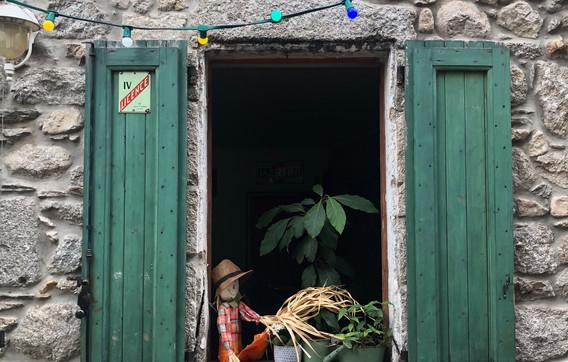 20200813 - Rando Mont Lozère (18).jpeg