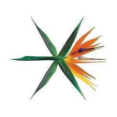 EXO「KO KO BOP」