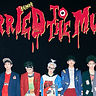 SHINee「Married To The Music」