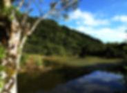 秘境竹林湖_N.jpg