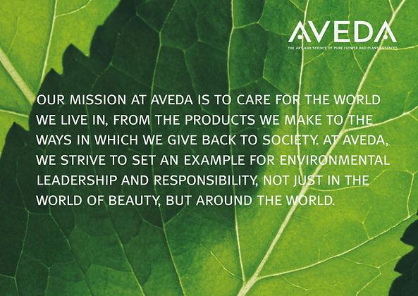Aveda Mission Studio Cabello Tampa