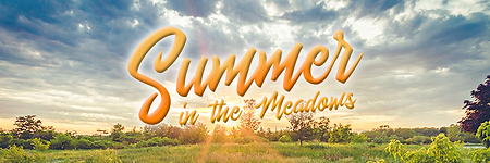 Summer in the Meadows.png