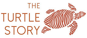 The+Turtle+Story+Logo.jpg