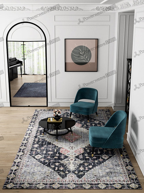 Modern Classic Chairs in Living Room