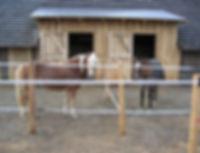 pferde-einstellplatze.jpg