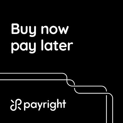 PayRight Digital Banner_200x200_V17.png