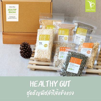 ชุดธัญพืชลำไส้แข็งแรง Healthy Gut