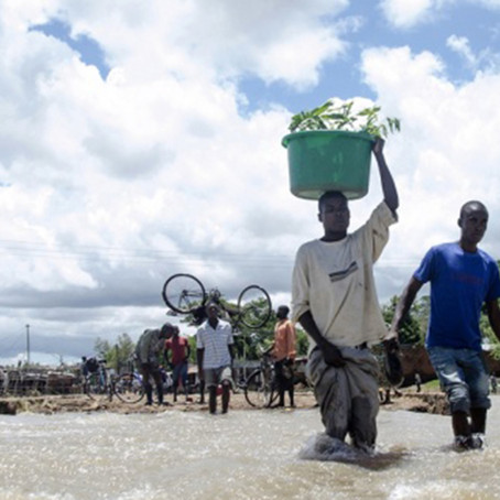 A Fair Trader's journey: Malawi