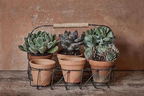 Nkuku Jara Terracotta Planter Set