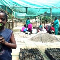 Fair Trader contributes to reducing global warming!