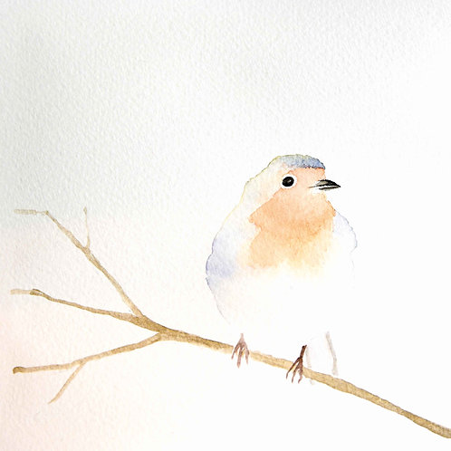 Robin Christmas Cards - 5 Pack