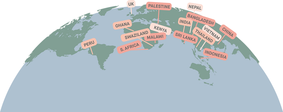 supplier globe diagram.png