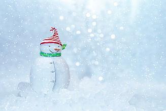 snowman-4645151_960_720.jpg