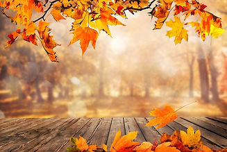 fall-4819039_960_720.jpg