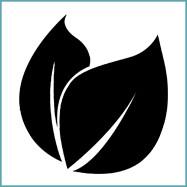 Icon Funktionsfasern