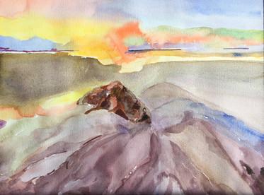 Volcano 2018