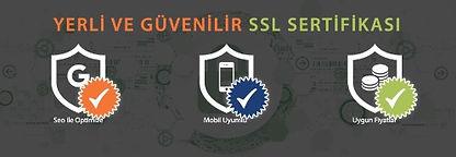 SSLslide222_edited.jpg