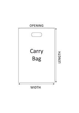 Icons_CarryBag.jpg