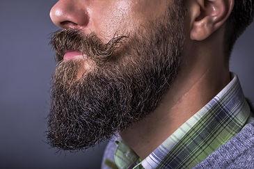 barbe en pointe.jpg