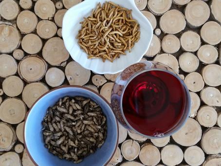 Jimini's : mon avis sur les insectes comestibles à l'apéritif
