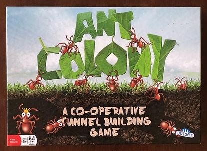 Ant Colony.JPG